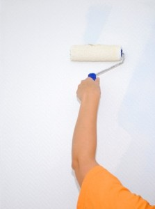 professional painter in Perth
